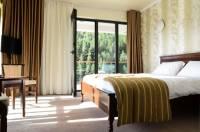 Pensiunea Resort David