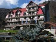 Motel Timisul de Jos